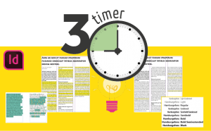 3 timer kursus indesign