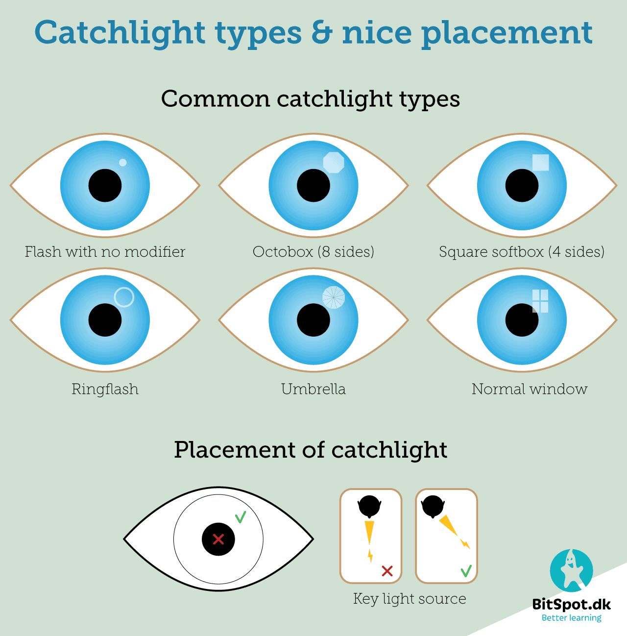 catchlight-infographic-bitspot-know-how-series