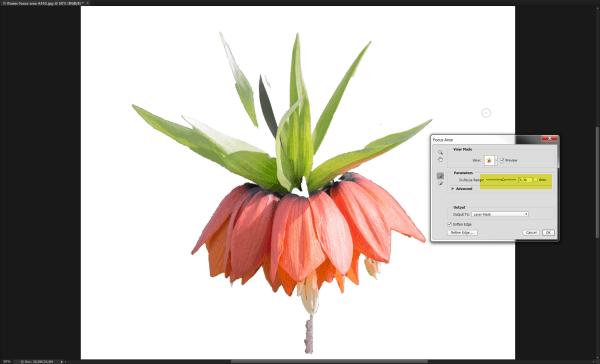 focus-area-photoshop-bitspot-kursus-04